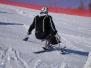 Alpské lyžování